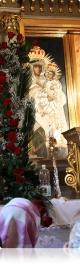 Праграма ўрачыстасцей  у дыяцэзіяльным санктуарыі ў Тракелях  11–12 ліпеня 2014 года